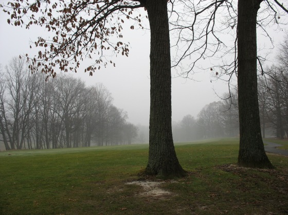 Fog on Reston National Golf Course