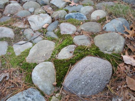 moss between stones