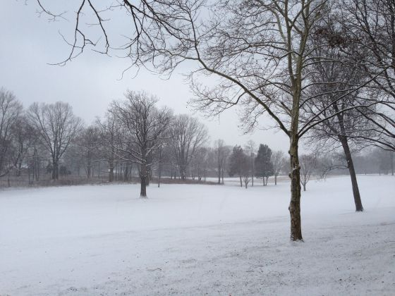 snowy morning on Reston National Golf Course