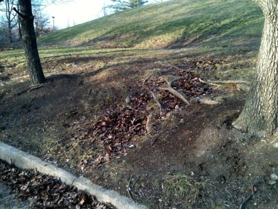 hillside erosion