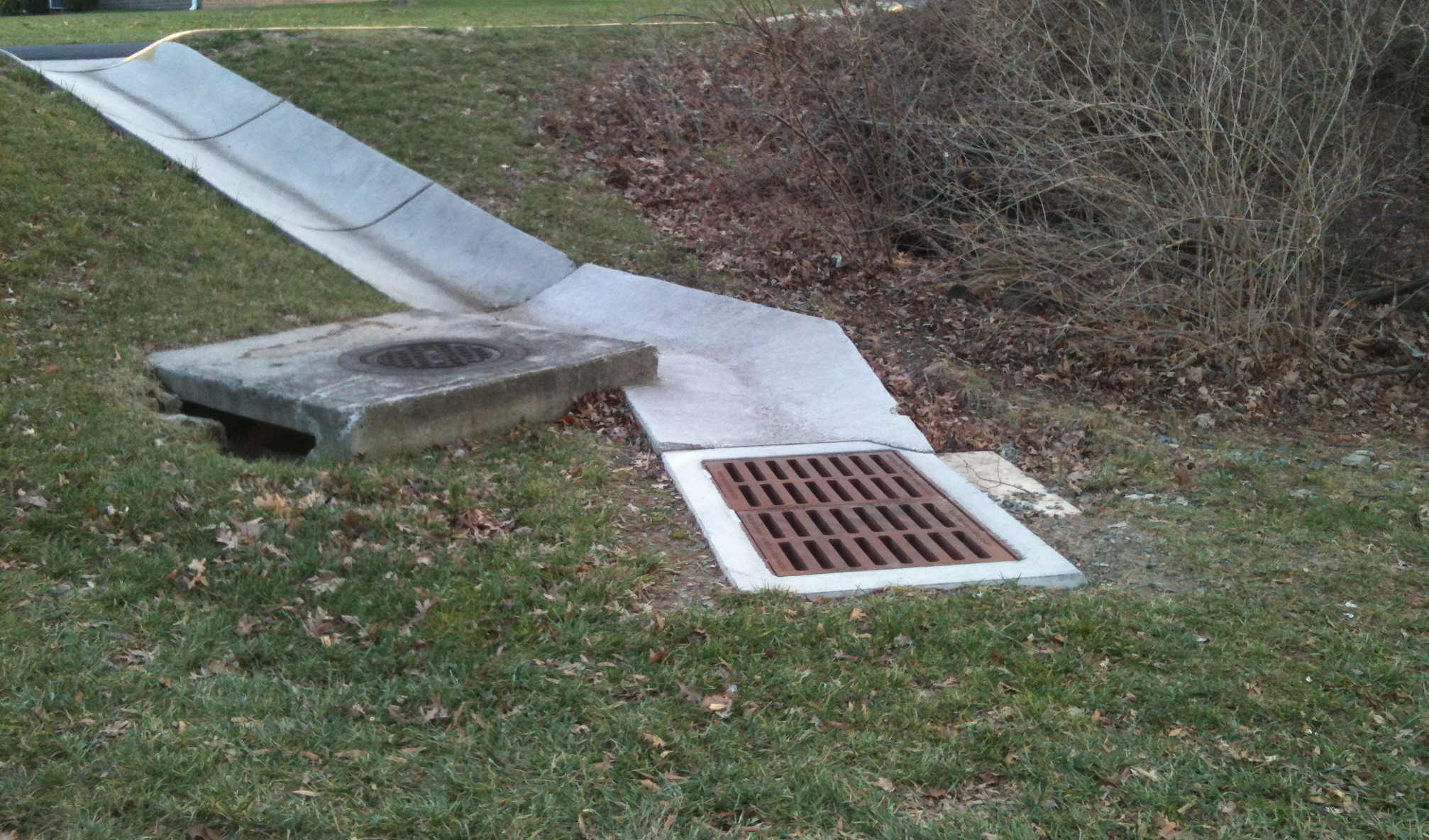 storm drain the squirrel nutwork