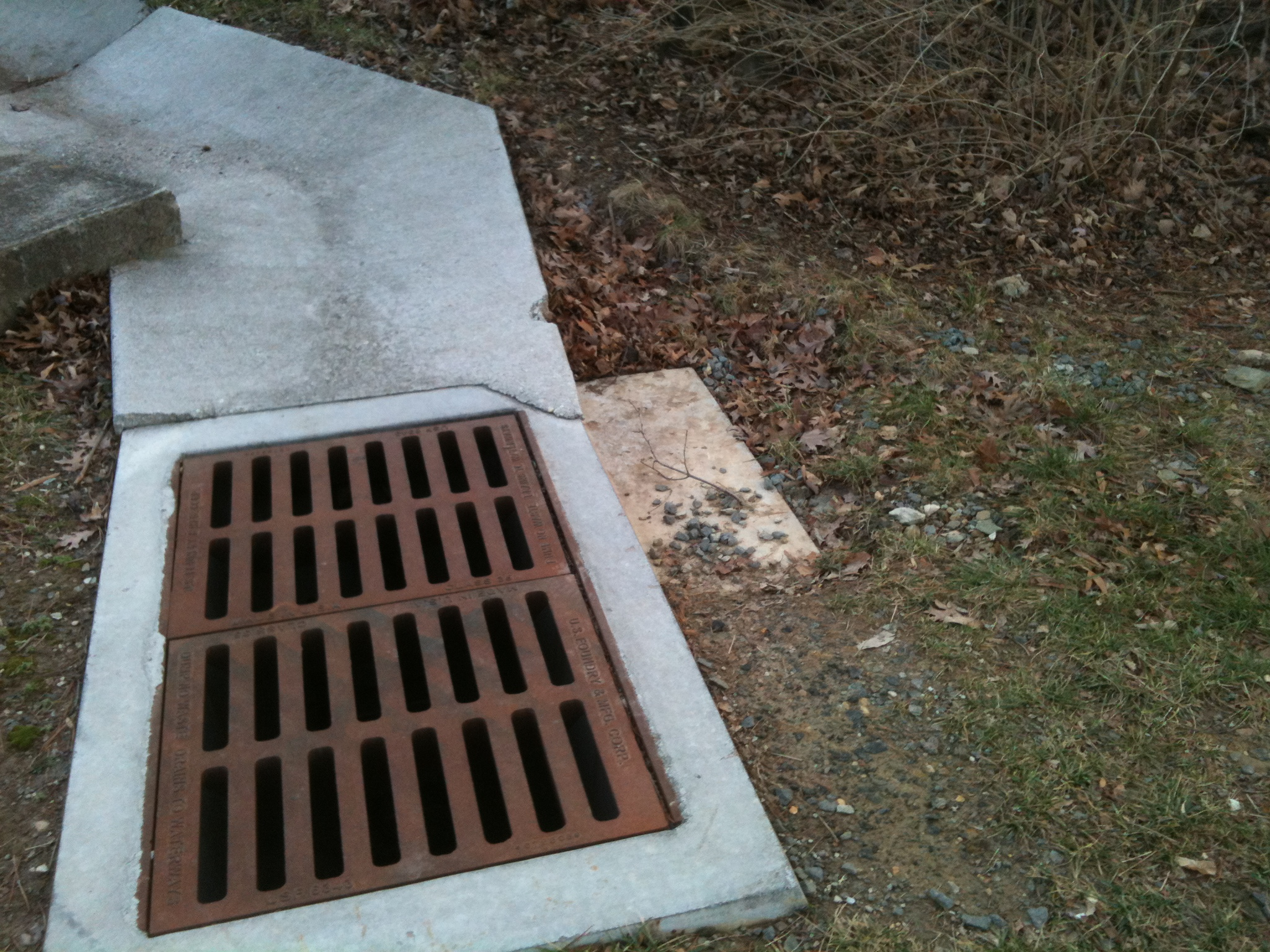 Concrete Storm Sewer : Storm drain the squirrel nutwork