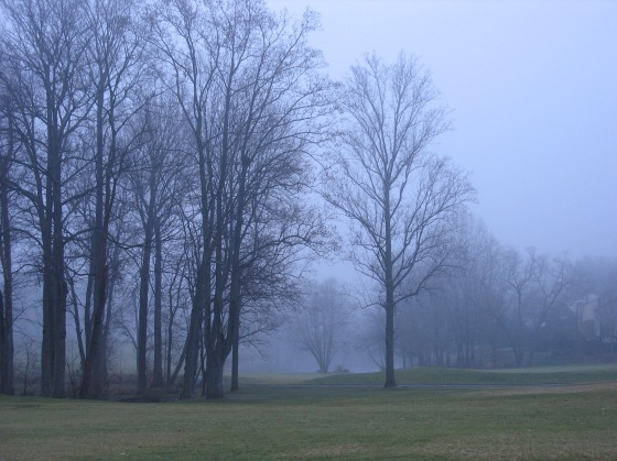 F is for Fog on the Reston National Golf Course