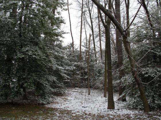 late winter snow
