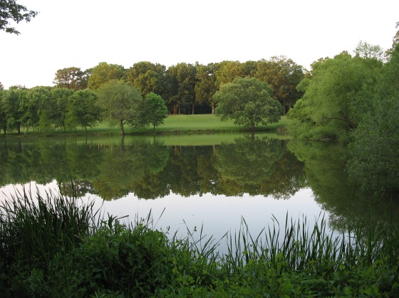 pond at reston National Golf Course