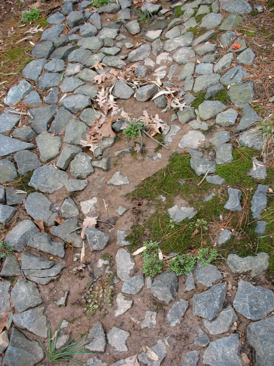moss growing in a permeable drainage