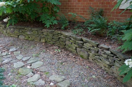 shady fern garden
