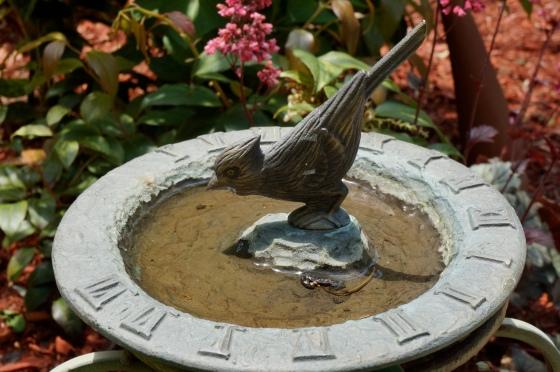 Cardinal sundial birdbath