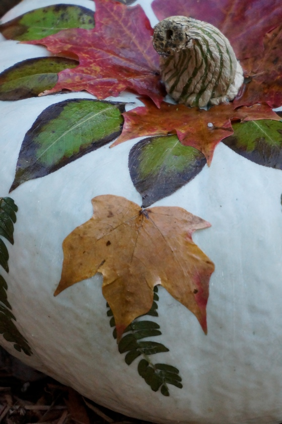 Nature Pumpkin