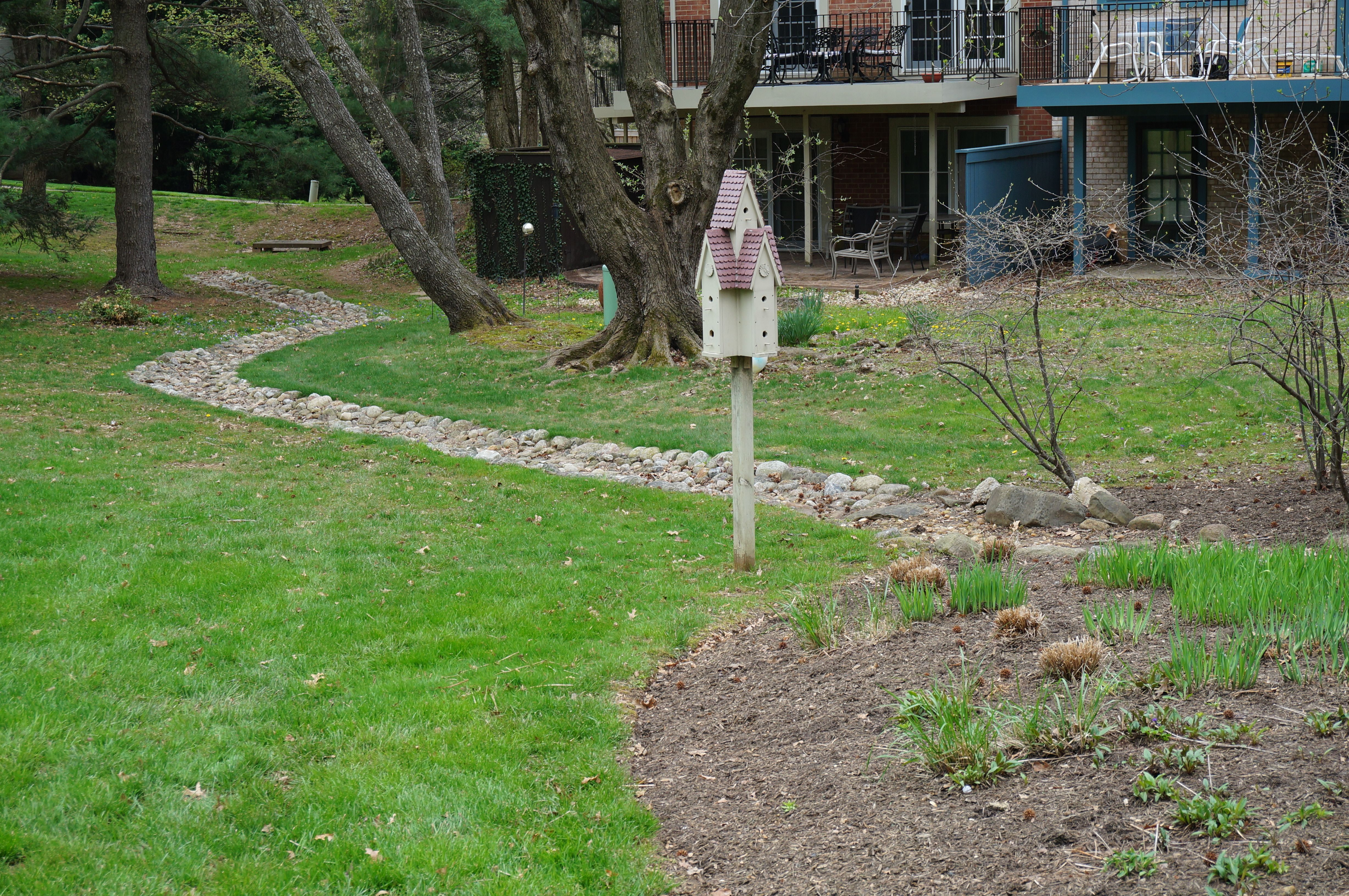 Water runoff solutions the squirrel nutwork for Drainage solutions for lawns