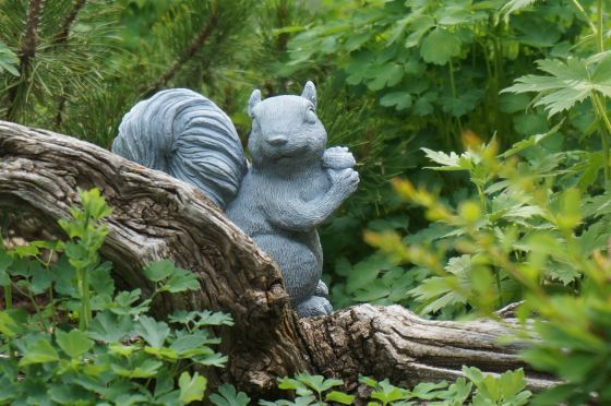squirrel statue