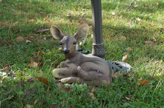 Fawn Wildlife Statue