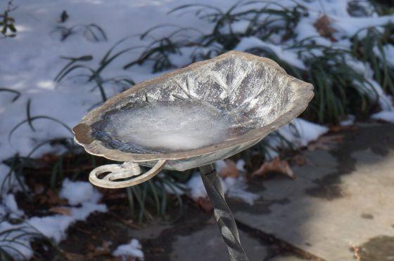 frozen water in birdbath