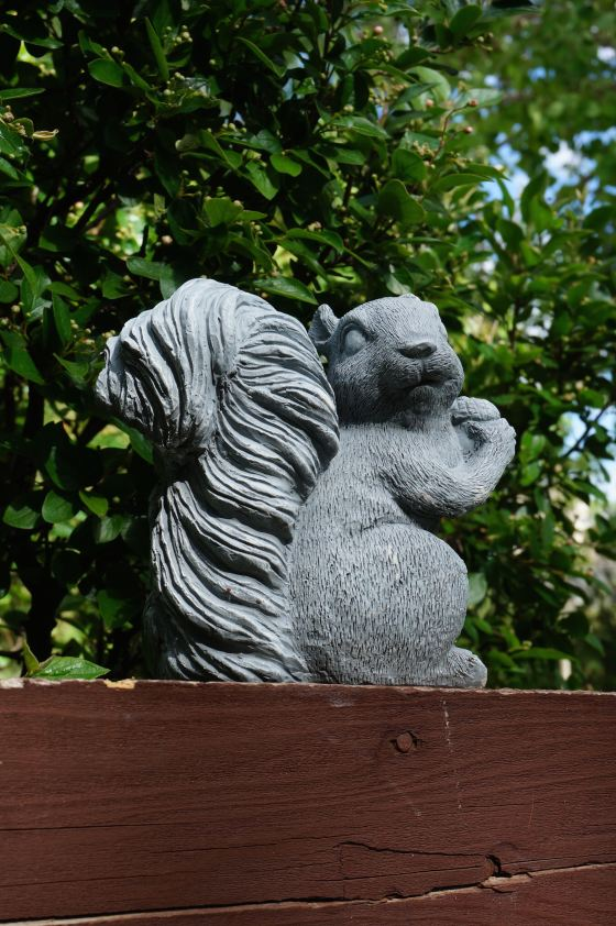 Squirrel wildlife statue