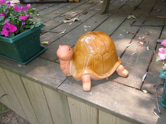 Turtle wildlife statue