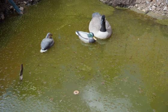 waterfowl wildlife statues