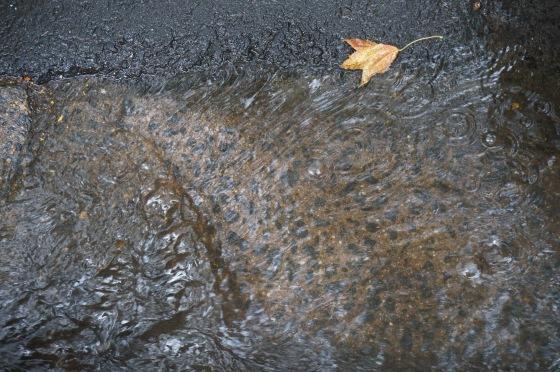 runoff in gutter