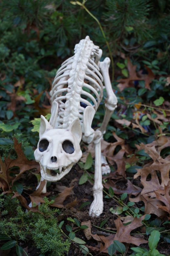Skeleton Wildlife statue