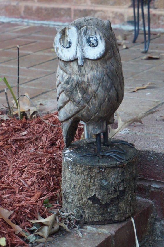 Owl wildlife statue