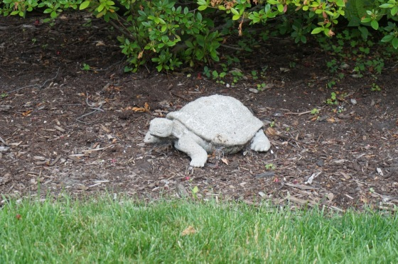 Turtle wildlife statue