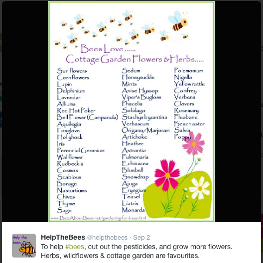 flower list from @helpthebees
