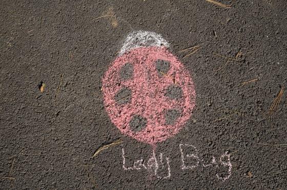 ladybug chalk drawing