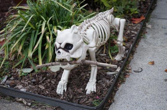 Skeleton dog wildlife statue